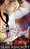 #8: Snow on the Roof