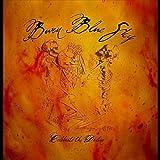 Celebrate the Decline by Burn Blue Sky (2010-08-10)