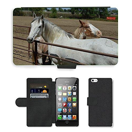 Just Phone Cases PU Leather Flip Custodia Protettiva Case Cover per // M00127476 Talahi Ruff Stock Horse Rodeo Stock // Apple iPhone 5 5S 5G
