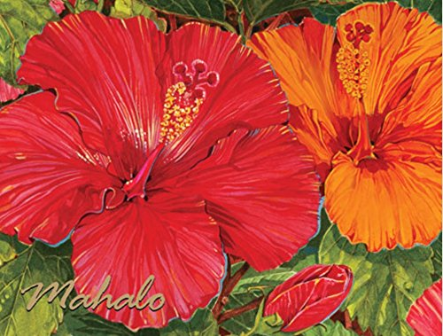 Hawaiian Thank You Mahalo Note Cards Boxed Red Hibiscus 10 Count by Islander