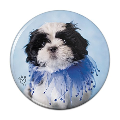 Shih Tzu Puppy Dog Jester Blue Compact Pocket Purse Hand Cosmetic Makeup Mirror - 2.25