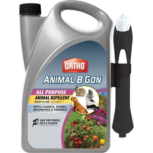 Ortho Animal B Gon All Purpose Animal Repellent Ready-to-Use Spray, 1-Gallon (Squirrel, Groundhog, Rabbit and Other Small Herbivore Repellent) ()
