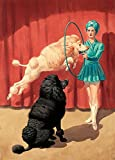 French Poodle Circus Performance Wallpaper Wall Mural - Self-Adhesive - Multiple Sizes - National Geographic Image from Magic Murals