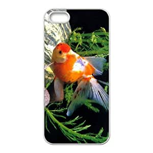 Customized case Of Goldfish Hard Case for iPhone 5,5S