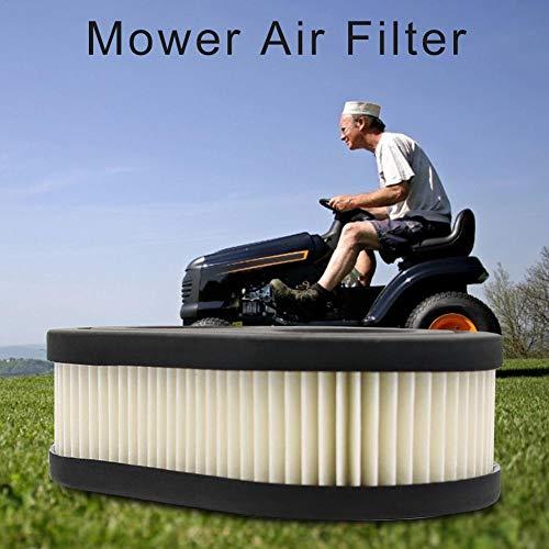 Euopat Filtros de Aire para cortacéspedes, Accesorios de ...