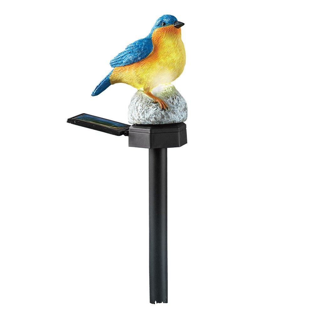 Amazon.com : Bluebird Solar Accent Stake Light Garden Decoration ...