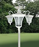 Sun-Ray Vittoria Solar Lamp Post and Planter