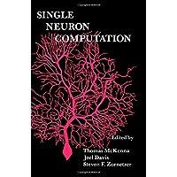 Single Neuron Computation (Neural Nets : Foundations to Applications)