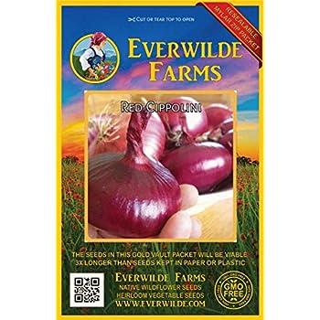 Everwilde Farms Mylar Seed Packet 500 Yellow Sweet Spanish Onion Seeds
