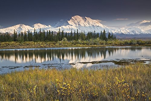 Posterazzi DPI2143729 The North Face And Peak Of Mt. Mckinley Is Reflected In A Small Tundra Pond In Denali National Park Alaska Poster Print 17 x 11