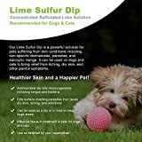 VetWELL Lime Sulfur Dip for Dogs, Cats & Horses