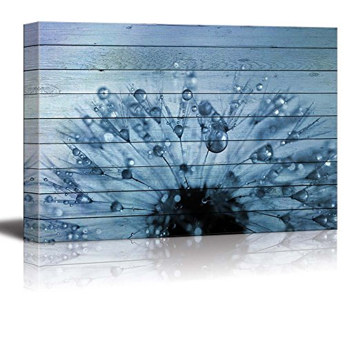 Dandelion Covered in Rain Drops Over Blue Wood Panels