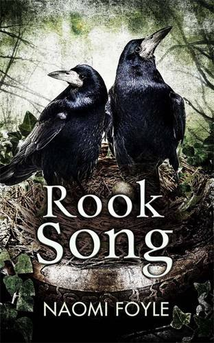 book cover of Rook Song
