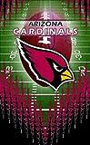 Turner NFL Arizona CardinalsMemo Book, 3 Packs (8120394)