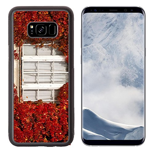 - Luxlady Samsung Galaxy S8 Plus S8+ Aluminum Backplate Bumper Snap Case IMAGE ID 31196363 White vintage window with white curtains framed by red autumnal leaves