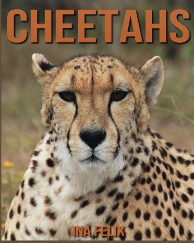 Cheetahs: Children Book of Fun Facts & Amazing Photos on Animals in Nature - A Wonderful Cheetahs Book for Kids aged 3-7