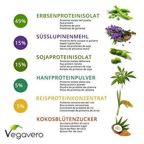 Proteína Vegana | Soja + Arroz Integral + Altramuz + Guisante + Cáñamo | Sin Azúcar | Sabor Chocolate o vainilla | Dosificador Incluido | Suplementos ...