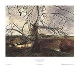 Pennsylvania Landscape, 1941 Art Poster PRINT Andrew Wyeth 30x25