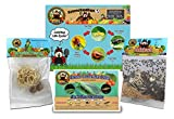 1,500 Live Ladybugs & 2 Praying Mantis Eggs in Pouch & 1000 Green Lacewing Eggs Includes Ladybug Life Cycle Poster