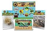 Bug Sales 1,500 Live Ladybugs & 2 Praying Mantis