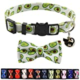 Cat Collar Breakaway with Bell and