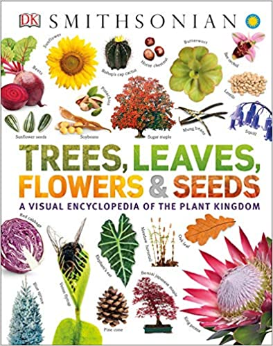 Leaves Trees Flowers and Seeds A Visual Encyclopedia of the Plant Kingdom