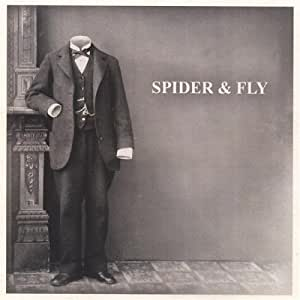 Spider & Fly