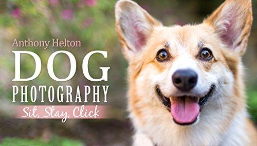 Dog Photography - Biggest Lens
