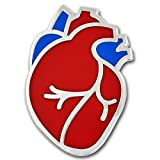 PinMart The Human Heart Medical Enamel Lapel Pin