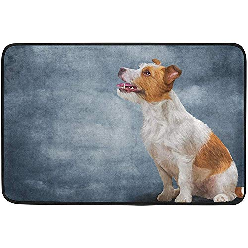 Staromil Jack Russell Terrier Dog Doormat 15.7 x 23.6 inch, Living Room Bedroom Kitchen Bathroom Decorative Lightweight Foam Printed Rug