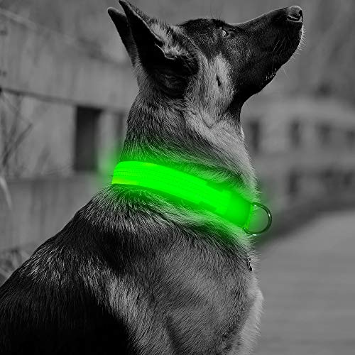 Vizbrite Collar Reflective Flashing Green%EF%BC%8CSmall