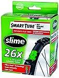 Slime Self-Healing 26