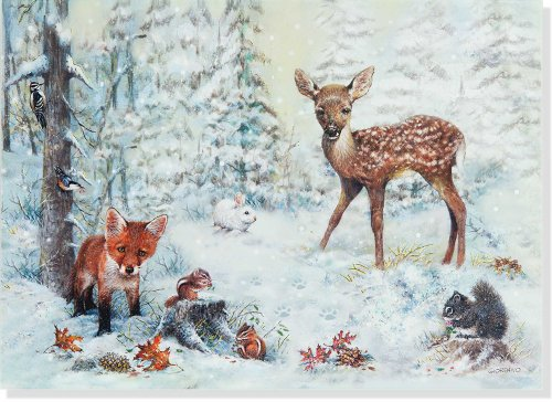 Snowy Forest Deluxe Boxed Holiday Cards (Christmas Cards, Greeting Cards) ()