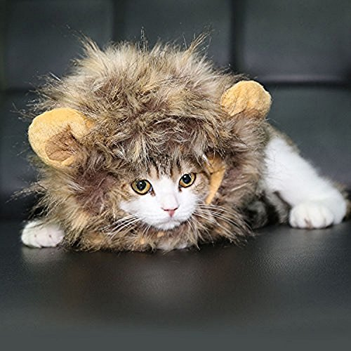Lion Mane for Cat Appreal, Pet Costume Lion Mane Wig Pet Cat Caps Cat Hat Dress up with Ears by IN HAND