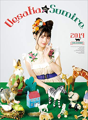 JAPAN IMPORT :: Sumire Uesaka sumire 2019 calendar, used for sale  Delivered anywhere in USA