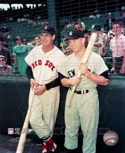 Mickey Mantle & Ted Williams - Yankees / Red Sox classic MLB 8x10 - Photographs Classic