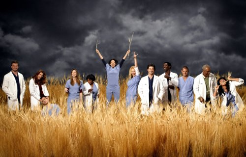 Grey's Anatomy Hd Photo Poster Abc TV Show #08