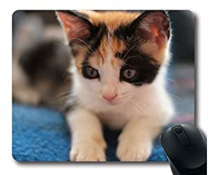 SUN VIGOR Calico Kitten Mouse Pad Oblong Shaped Natural Eco Rubber Design Durable Mouse Mat Computer Accessories Gaming Mouse Pads For Gift
