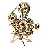ROBOTIME 3D Wooden Puzzle for Adults DIY