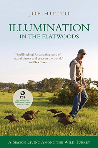 Illumination in the Flatwoods: A Season With The Wild Turkey
