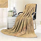 Flannel Fleece Luxury Blanket Natural Marble Background Plush Microfiber Solid Blanket(90''x 70'')