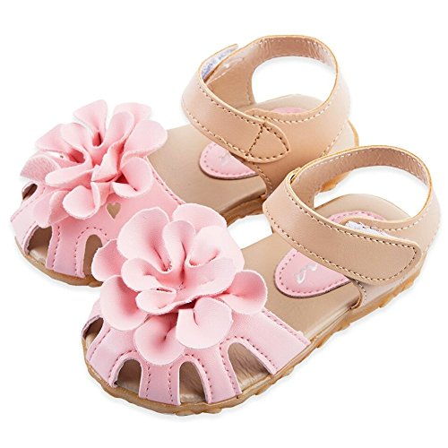 NITYP @ Baby Girls Toddlers Kids Flower Shoes (Rink, 10.5)