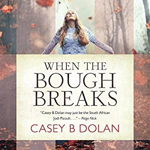 When The Bough Breaks Audiobook