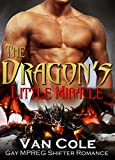 The Dragon's Little Miracle: Gay MPREG Paranormal Romance (Shapeshifter Bisexual Short Reads Shifter Romance Book 1)