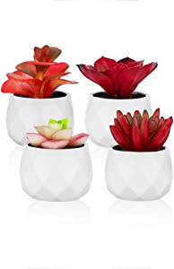 Small Fake Succulent Plants Set – Cute Desk Plant Home Decor - Realistic Faux Succulents in White Ceramic Pots – Mini Red Succulent Decor for Bedroom Bathroom Bookshelf Office Desk Accessories