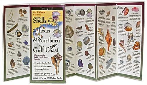 Shells and Beach Life of Texas & Northern Gulf Coast (Foldingguides)