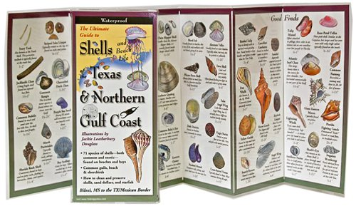 The Ultimate Guide to Shells of the Texas & Northern Gulf Coast (Foldingguides)