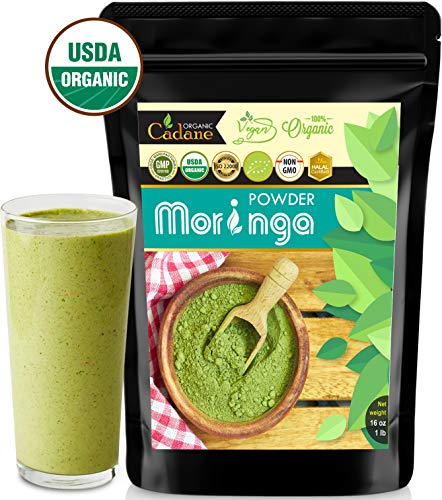 USDA Organic Moringa Powder - from India 16oz | Miracle Oleifera Plant Based Protein Powder Contains Vegan Calcium, Multivitamin, Omega & Core Nutrition | Antioxidant, Brain Booster, Energy Drink