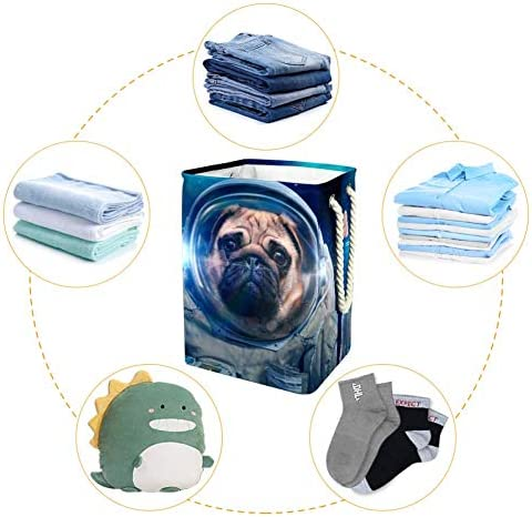 EZIOLY Panier à linge pliable avec poignées et supports amovibles pour ranger vos vêtements et jouets dans la buanderie, la chambre à coucher