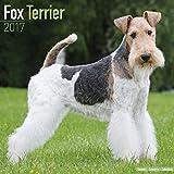 Fox Terrier Calendar 2017 - Dog Breed Calendars - 2016 - 2017 wall calendars - 16 Month by Avonside